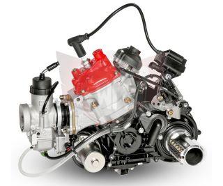 MOTOR 125 DD2 EVO 2020