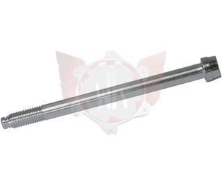 INBUSSCHRAUBE ACHSSCHENKEL 10x120 M10